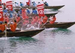 因島水軍まつり、小早レース